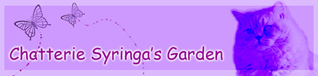 Syringa's Garden